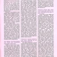 plus-mart-2003-yazi-4